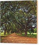 The Deep South Wood Print by Steve Harrington