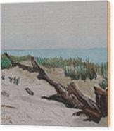 The Drifter Wood Print by Dana Schmidt