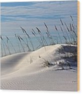 The Dunes Of Destin Wood Print by JC Findley