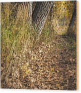 The Fall Way Home Wood Print by Michael Van Beber
