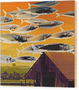 The Fish Farm 5d24404 Long Wood Print by Wingsdomain Art and Photography