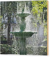 The Fountain Wood Print by Mike McGlothlen