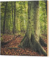 The Giving Tree Wood Print by Scott Norris