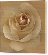 The Golden Rose Flower Wood Print by Jennie Marie Schell