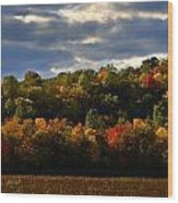 The Layers Of Autumn Wood Print by Julie Dant