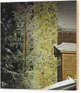 The Night Light Wood Print by Lois Bryan