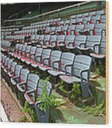 The Old Ballpark Wood Print by Frank Romeo