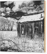 The Old Homestead Wood Print by Cat Connor