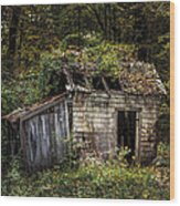 The Old Shack In The Woods - Autumn At Long Pond Ironworks State Park Wood Print by Gary Heller