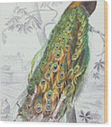 The Peacock Wood Print by A Fournier