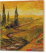 The Road To Tuscany Wood Print by Larry Martin
