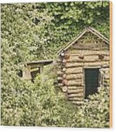 The Root Cellar Wood Print by Heather Applegate