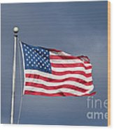 The United States Of America Wood Print by Benjamin Reed
