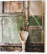 The Urinal Wood Print by Gary Heller