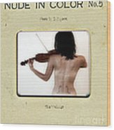 The Violinist  Wood Print by Steven  Digman