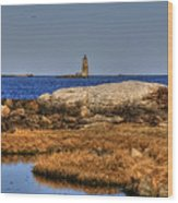 The Whaleback Lighthouse Wood Print by Joann Vitali