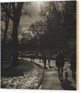 They Come To Central Park Wood Print by Madeline Ellis