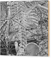 This Is Your Spinal Notice Wood Print by Betsy Knapp