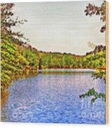 Thousand Trails Preserve Natchez Lake  Wood Print by Bob and Nadine Johnston
