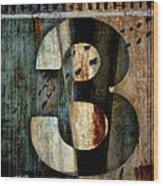 Three Along The Way Wood Print by Carol Leigh