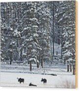 Three Bull Moose Wood Print by Deby Dixon