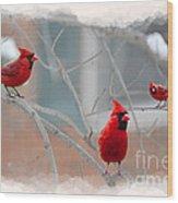 Three Cardinals In A Tree Wood Print by Dan Friend