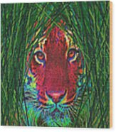 Tiger In The Grass Wood Print by Jane Schnetlage