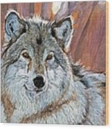 Timber Wolf Wood Print by David Lloyd Glover