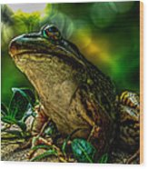 Time Spent With The Frog Wood Print by Bob Orsillo