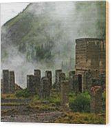 Tomboy Ghost Town II Wood Print by Daniel Woodrum