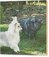 Treats For Woody And Schnitzel Wood Print by Artist and Photographer Laura Wrede