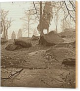 Tree And Steps At Devils Den - Gettysburg Wood Print by Jan W Faul
