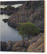 Tree At Sunset At The Granite Dells Arizona Wood Print by Dave Dilli