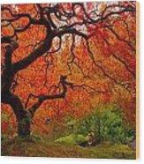 Tree Fire Wood Print by Darren  White