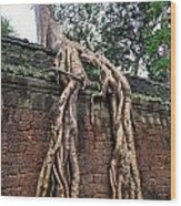 Tree Roots On Ruins At Angkor Wat Wood Print by Sami Sarkis