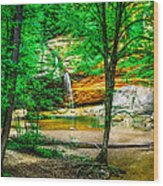 Tree Roots Wood Print by Optical Playground By MP Ray