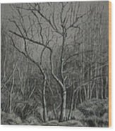 Trees Along The Greenway Wood Print by Janet Felts