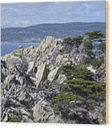 Trees Amidst The Cliffs In California's Point Lobos State Natural Reserve Wood Print by Bruce Gourley