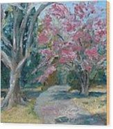 Trees Of Windermere Wood Print by Susan E Jones