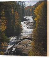 Triple Falls Wood Print by Penny Lisowski