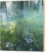 Trout Pond Wood Print by Mary Wolf