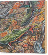 Trout Stream Wood Print by Jenn Cunningham