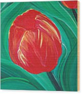Tulip Diva By Jrr Wood Print by First Star Art