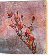Tulip Tree Budding Wood Print by J Larry Walker