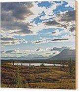 Tundra Burst Wood Print by Chad Dutson