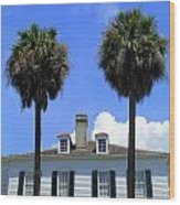 Twin Palms South Battery Wood Print by Randall Weidner