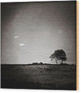 Two Clouds And A Tree Wood Print by Dave Bowman