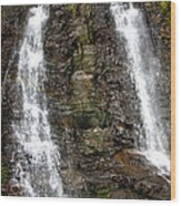 Two Falls Wood Print by Garry Gay