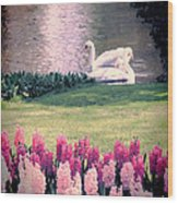 Two Swans Wood Print by Jasna Buncic