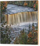 Upper Tahquamenon Falls  Wood Print by Todd Bielby